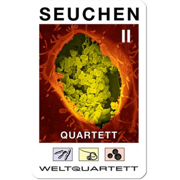 Seuchen-Quartett (German language)